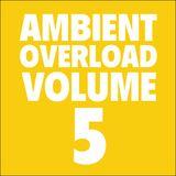 Ambient Overload Vol. 5