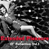 "Extended Pleasure - 12"" Collection Vol.I"