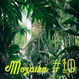 Mozaïka #10