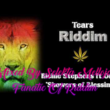 Tears Riddim (2007) Mixed By SELEKTA MELLOJAH FANATIC OF RIDDIM