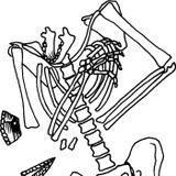 The Homo neanderthalensis of Kebara