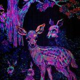 Freaky animal visions
