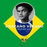 4. Introducing Caetano Veloso - Mr Tropicalia