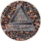 roman hello strange & kashatskikh - hello strange podcast #175