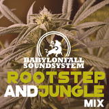 Rootstep & Jungle Mix