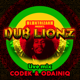 Elektrizare Dub Lionz Party / Live Mix b2b Codek & Odainiq