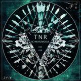 Schwarzmodul - TNR Mix 008