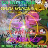 "DJ SINCLAIR H27B DIVINIA MAHAON ORGASMICA 2 ""Tel Aviv beatejuice"""