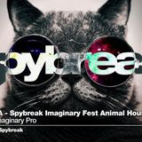 VA - Spybreak imaginary Fest Animal House