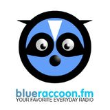 B. R. Funky Promo Mix - www.blueraccoon.fm