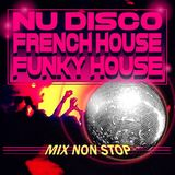 Nu-Disco, French House, Funky House