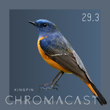 Chromacast 29.3 - Kingpin