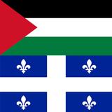 La cause Palestinienne au Québec: Politique, Societé Civile et Médias
