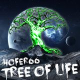 hofer66 - tree of life - live at ibiza global radio - 150330