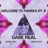 Gabe Real - Real Love 2