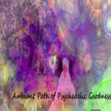 Ambiant Path of Psychedelic Goodness