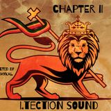 I.tection Sound Chapter II   > strictly conscious Roots / Dub & Steppaz <