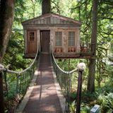 Tree House - Darksidah - 2015