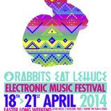 Rabbits Eat Lettuce Festival 2014 - Bass To Pain Converter