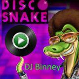 Desert Disco Snake