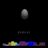 #057 - EVOLVI (2014)