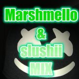 Marshmello & Slushii MIX