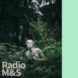 Radio M&S - 自然波 III (Forest 森)