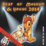 Best of MashUp & House 2014 X-Mas Edition - mixed by DJ Momi