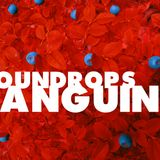 Soundrops - Sanguine