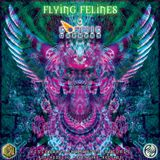 COSMIC ONENESS - Flying Felines - DJ SET
