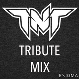 TNT a.k.a. Technoboy & Tuneboy Tribute Mix By: Enigma_NL