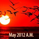 5.12.2012 Tan Horizon Shine A.M.