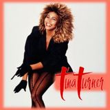 TINA TURNER : HITS