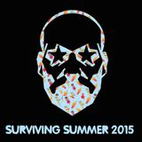 Sander Kleinenberg – Surviving Summer 2015