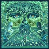 In da Zone 22 Janvier 2012 : Gangrene (Oh No + The Alchemist) & co!