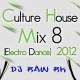 DJ RAW RK_Culture House Mix 8 (Electro Dance) 2012