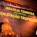 Zorzal FM #14 - Teimosia Tropicaos
