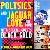 POLYSICS(JPN) Live 2008-11-08 Magic Stick,Detroit, MI