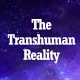 The Transhuman Reality
