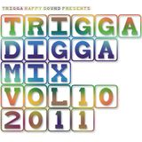 TRIGGA DIGGA MIX VOL. 10