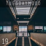 Tuesday Mood #19