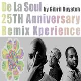 De La Soul 25th Anniversary Remix Xperience