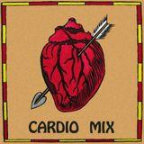 Cardio 1 [Punk/Glam/Eclectic]