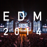 Best of 2014 EDM Mix