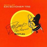 Schiller - Ein Schöner Tag (roberto valentiano bootleg)