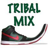 Tribal-Mambo Mix 2013 (DJ Zub Zero)