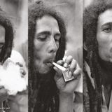 Mike Smoov Presents Bob Marley 101
