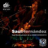 Saúl Hernández Sala Nezahualcóyotl de la UNAM 02•05•2013