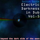 Electric Darkness in Dub Vol.5 (beyond the dark side of the moon)