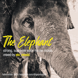 The Elephant | strong, supreme ease house music